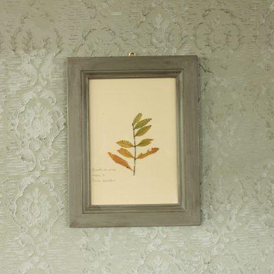Quadro realizzato con cornice in legno e foglie di melograno