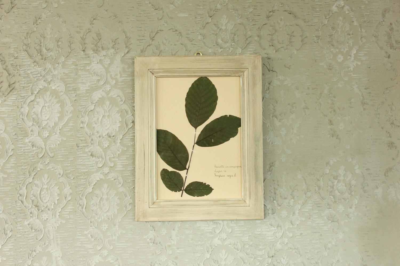 Quadro con cornice bianca con foglie di noce