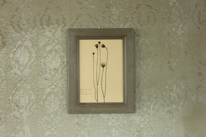 Quadro grigio con fiori di tarasso